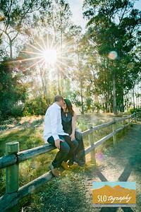 Pismo Beach Eucalyptus Forest
