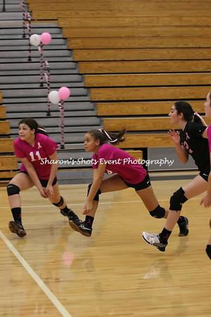 Freshman Girls Volleyball v Lyman 2017