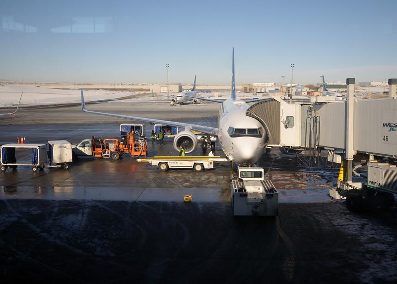The plane, the plane..