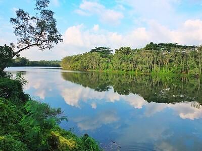 Punggol Reservoir