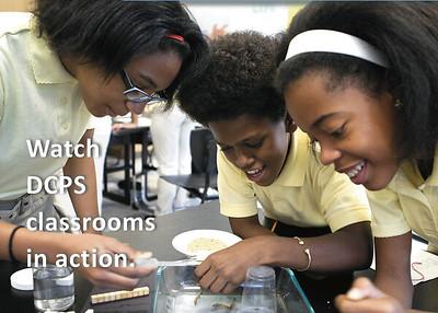 DC Public Schools: Film | Graphic Design | Photo