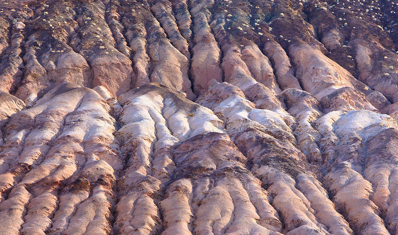 Death Valley Hillside detail 01 31 10 3 1200.jpg