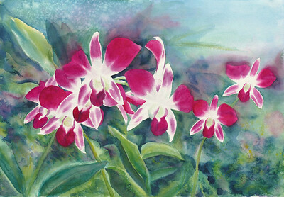 """""""Orchid Garden"""" (watercolor) by Elizabeth Burin"""