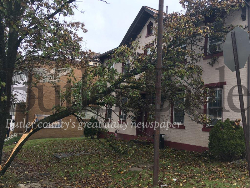 Last year's ice storm claimed another casualty when this pear tree came down onto a house at 300 W. Cunningham St. in Butler. No one was injured.