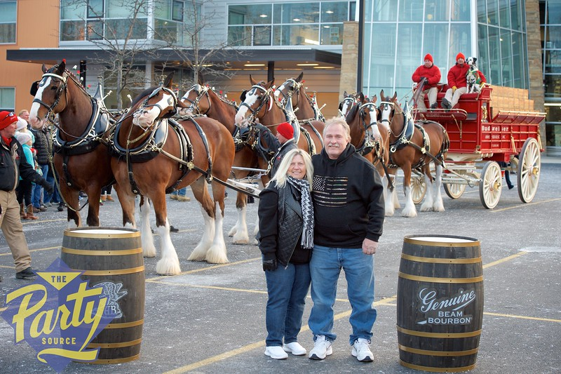 Clydesdale Portraits 292.jpg