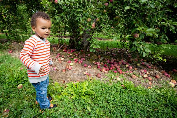 Sept 15, 2012: Applewood Orchard