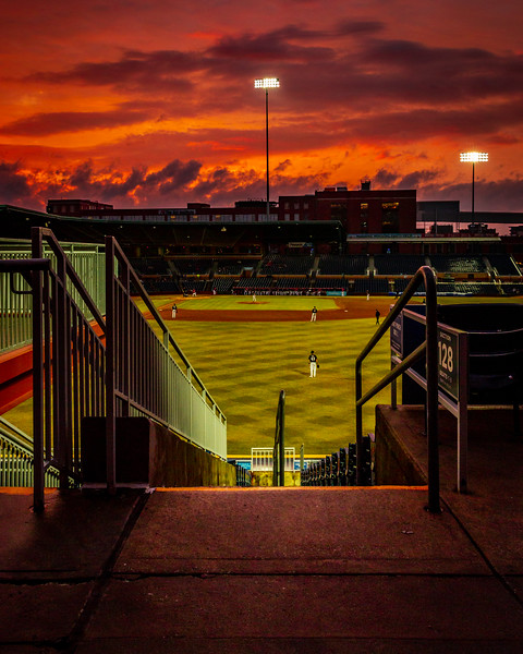 Duke Baseball takes on the Louisville Cardinals  at Durham Bulls Athletic Park in Durham, NC on March 15th, 2019.