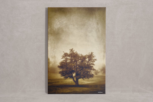 A Tree in the Fog 2 - $125