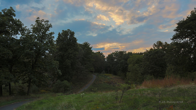 Early Fall Sunset over Maple Ridge Tall Pine State Preserve, Mantua, New Jersey