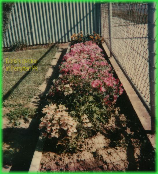 Doris's garden at Ferryden Pk0315.jpg