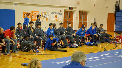 Rouse Duals
