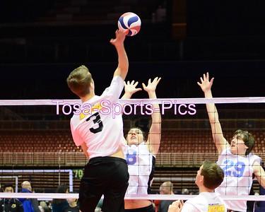 2015 Milwaukee Sting Volleyball