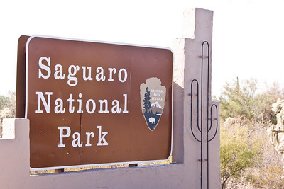 2010  Arizona