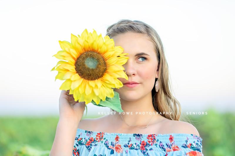 Sunflower 0905.jpg