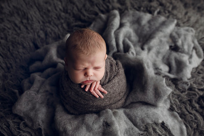 Maxwell N Newborn