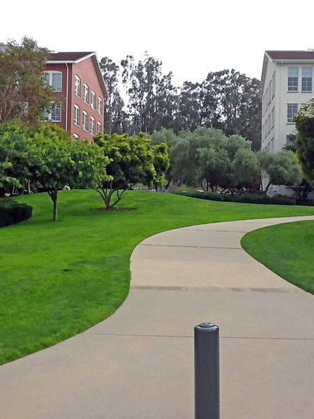 Lucasfilm grounds