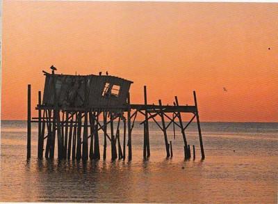 Ft Myers Beach 2010