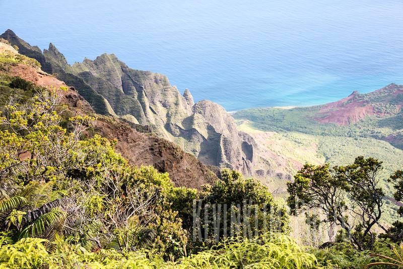 Kauai2017-048.jpg