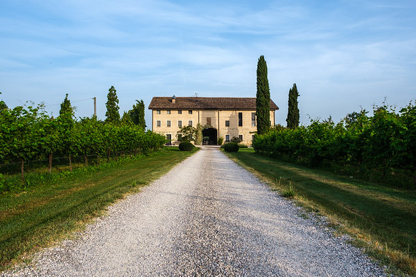 2019 Umbria / Tuscany