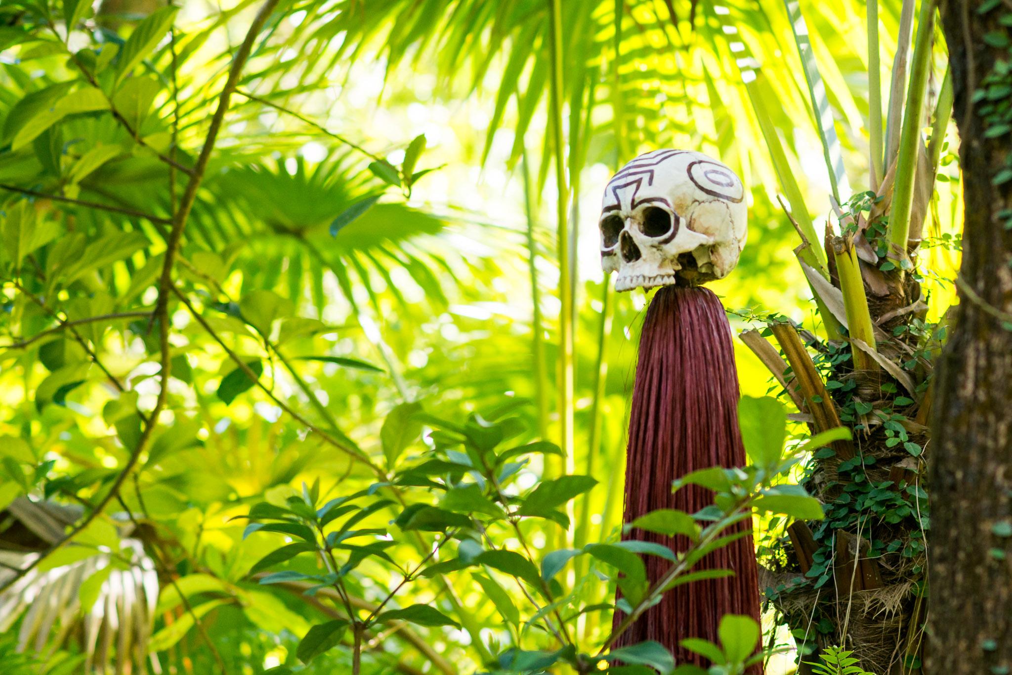 Jungle Cruise Skull - Walt Disney World Magic Kingdom
