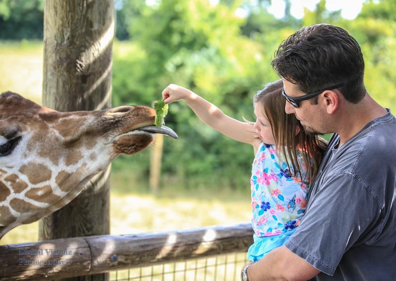 2016-07-17 Fort Wayne Zoo 269LR.jpg