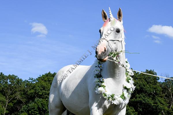 Lucy the Unicorn 071420