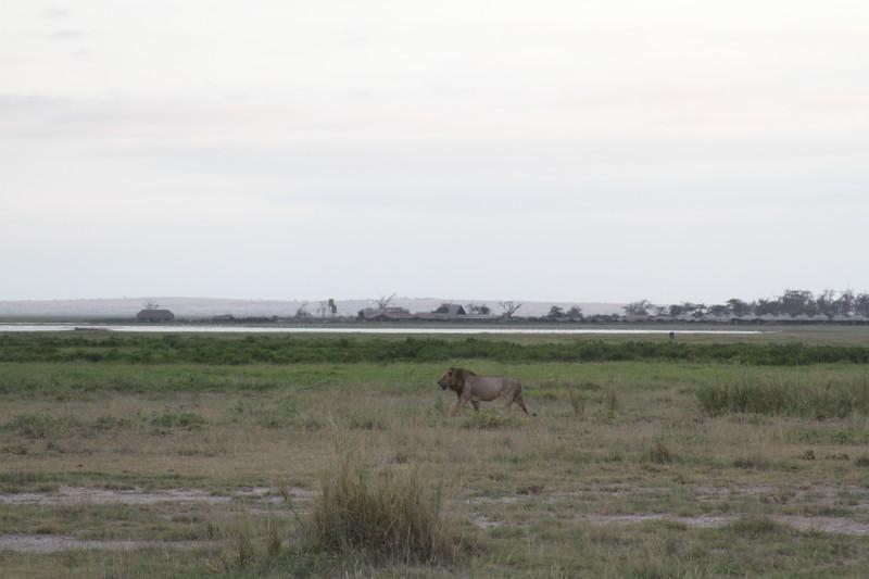 Kenya 2019 #2 1892.JPG