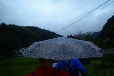 Japan Umbrellas