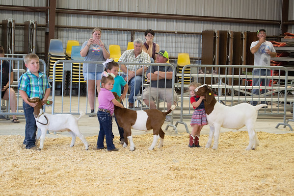 Kellyville Goat Shows