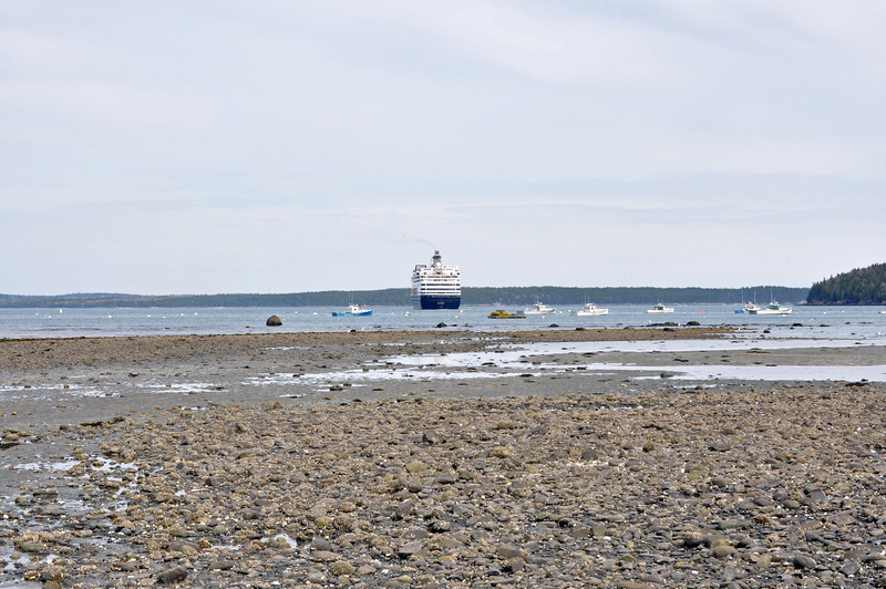 Low tide with a cruise ship in the distance.