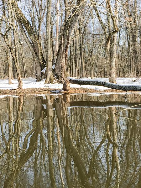*2018-02-18 Wallkill River Kayaking in Winter-2018 02 18 (464 of 465)-019.jpg
