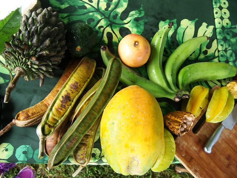 Kohala-Farm-Tours-fruits.jpg