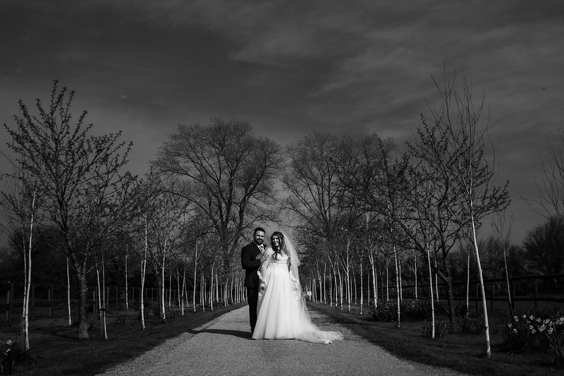 Wedding_Adam_Katie_Fisher_reid_rooms_bensavellphotography-0425.jpg