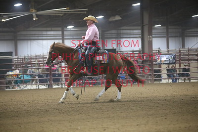 48. AA Working Ranch Horse