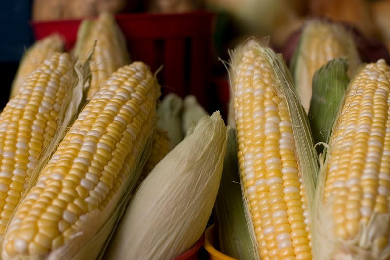 fresh-corn_2521293198_o.jpg