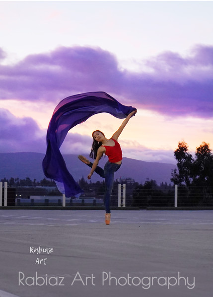 Dancer2495Logo.jpg