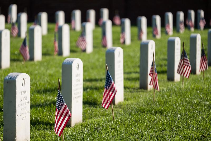 Flag Adorned Graves of United States Veterans