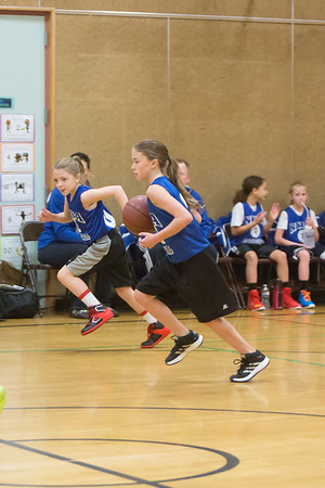 2014-15 NYBA Basketball