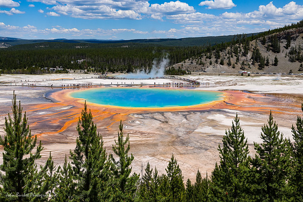 Yellowstone 2021 Selects