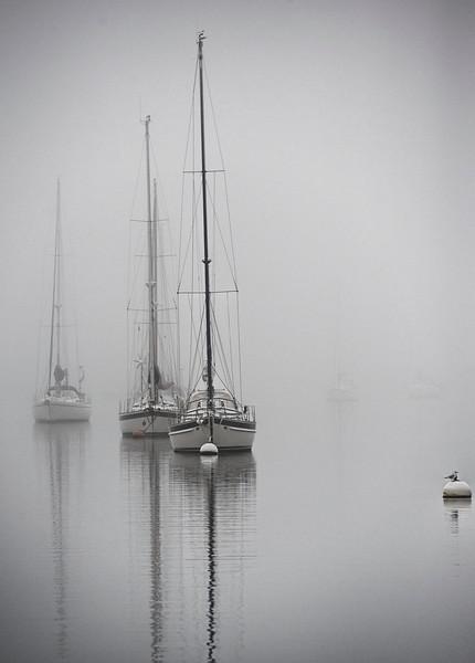 yachtsAugust14_2452.jpg