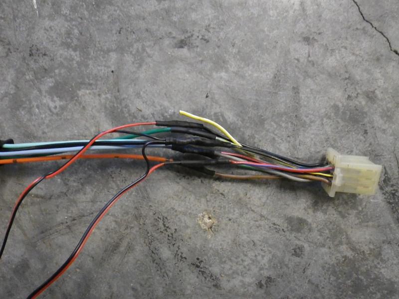 IMGP4468.JPG