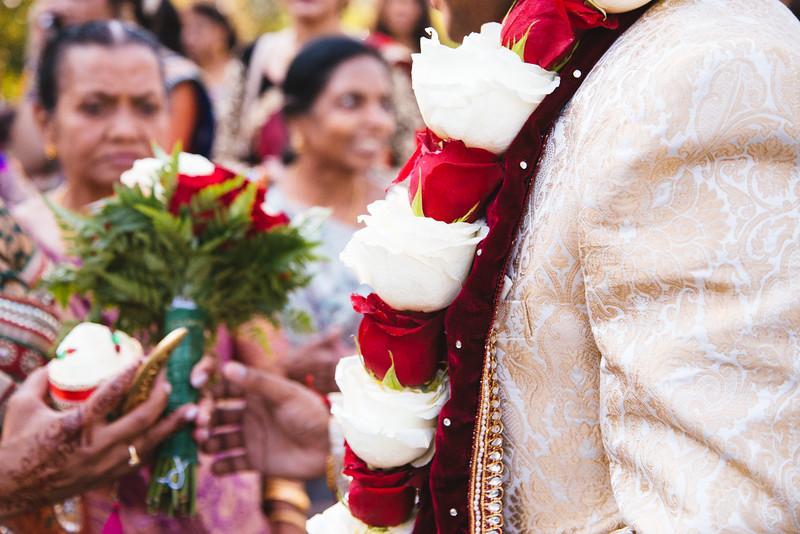 Le Cape Weddings - Robin and Virag_-225.jpg