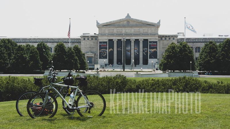 fieldmuseummattewidebikes.jpg