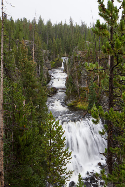 02_Yellowstone National Park_Montana_Wyoming-84.jpg