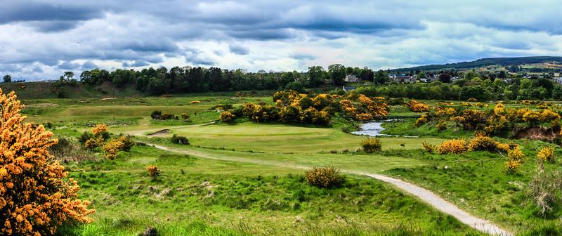 -tain-golf-photography-scotland--5.jpg