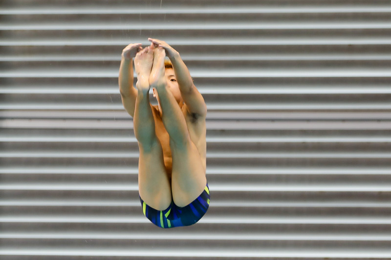 Singapore_National_Diving_Championship2018_2018_07_01_Photo by_Sanketa Anand_610A8309.jpg