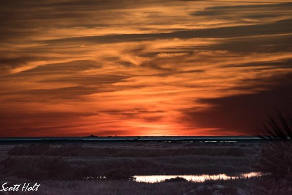 Mustang Island Wetlands