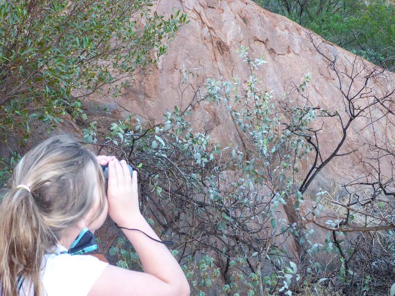 04. Uluru (Ayers Rock)-0149.jpg