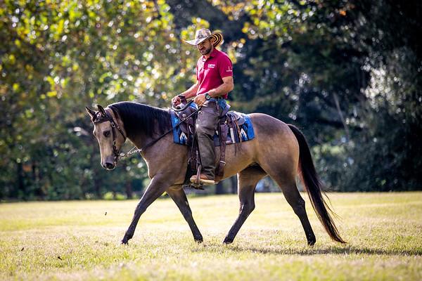 Oakie under saddle