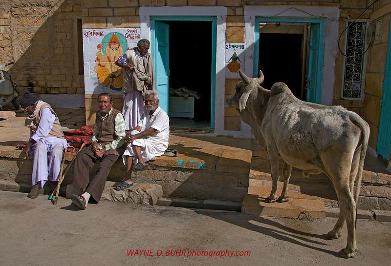 India2010-0209A-73A.jpg